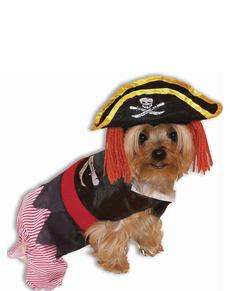 Kostuum piraat voor honden